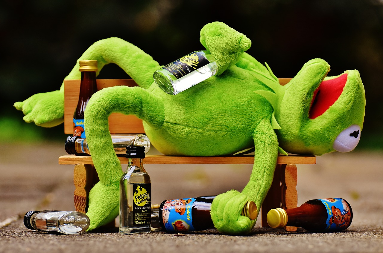drunk frog on a bench