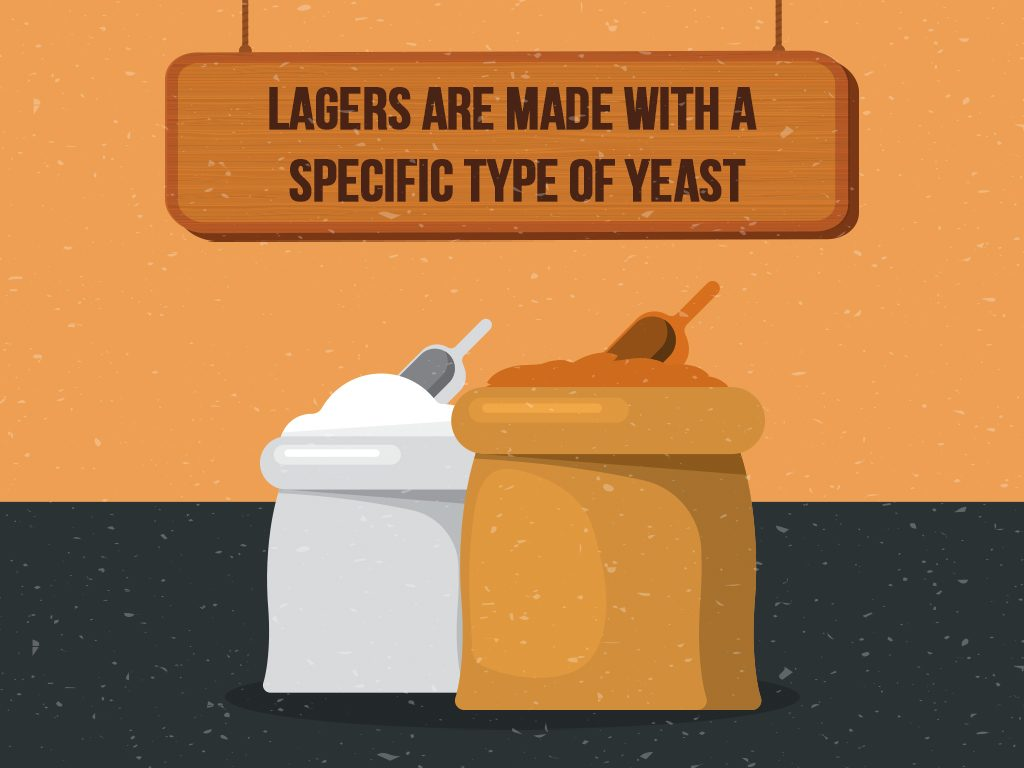 Lagers Are Made With A Specific Type Of Yeast